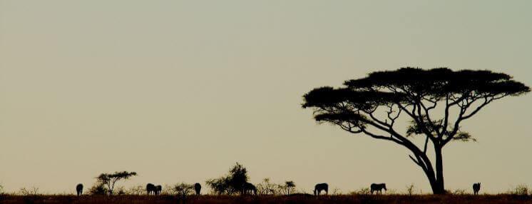 Tanzania Virtual Tour